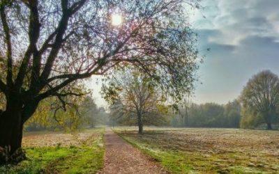 La pace interiore: come trovarla!