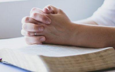 La Bibbia: 5 consigli per iniziare la lettura!